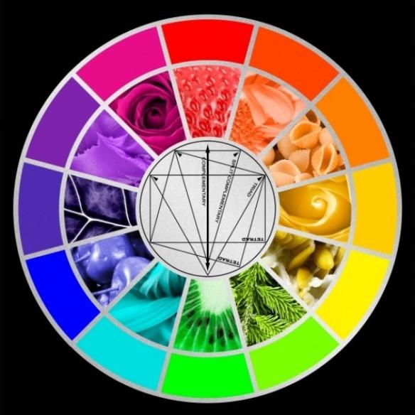 stylized-color-wheel_61-1889