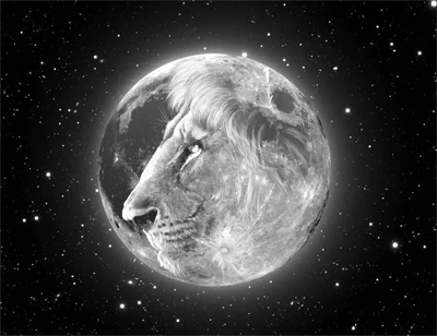 leoan lua